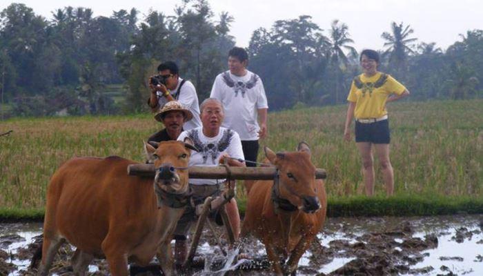 Bali Outing dan Tubing Ubud Camp Full Day
