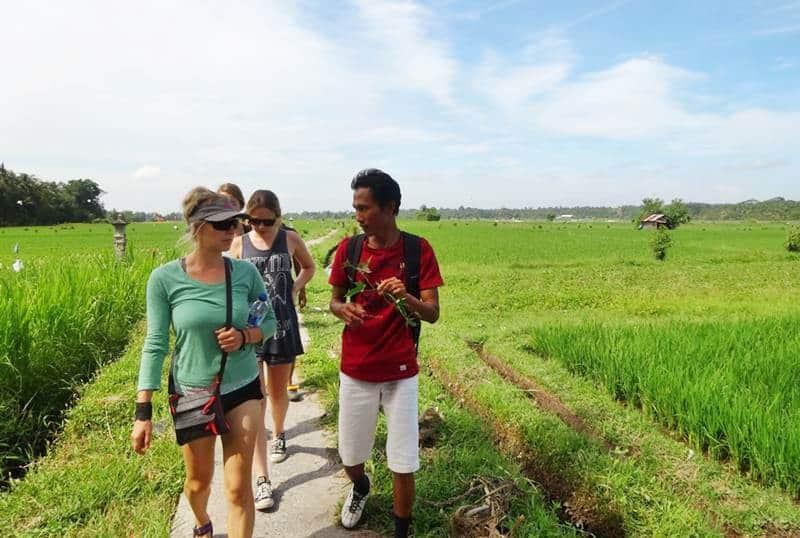 Bali Rice Paddies Trekking Ubud Camp 01