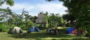 Bali Camping Ubud Camp New 04