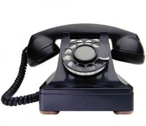 Nomor Telepone Ubud Camp