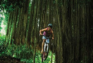 Bali Cycling Tours Around Bongkasa Pic