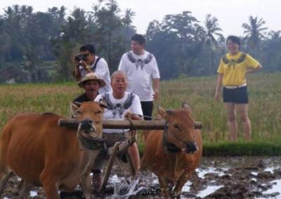 Bali Outing dan Tubing Ubud Camp Full Day Feature