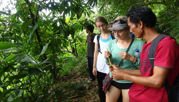 Bali Tubing dan Trekking Ubud Camp Half Day Feature