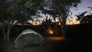 Bali Gathering Sunset Dinner & Single Electone Half Day 4
