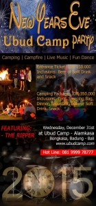 New Year's Eve Ubud Camp Party - Download