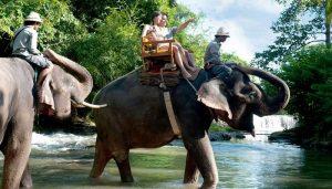 Object Wisata di Ubud Bali Zoo